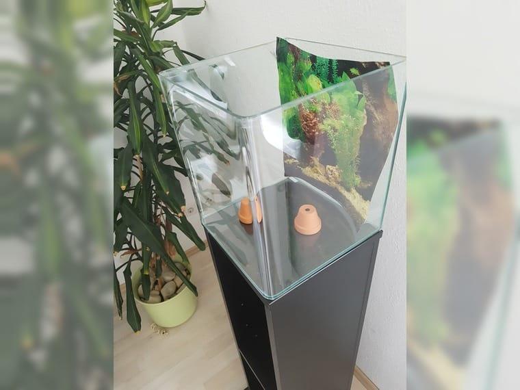 Erfreut Aquarium Unterschrank Eheim Galerie - Die Kinderzimmer ...